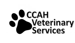 CCAH Veterinary Services